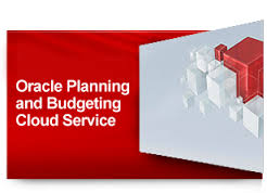 Oracle Planning and Budgeting in the Cloud