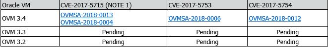 Spectre_Meltdown_Oracle_VM_Patch_Emtec.png
