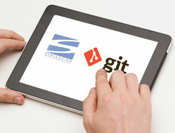 A practitioner's perspective on SVN and Git